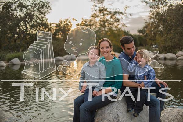 tinytraits_101215_Stein Family-200
